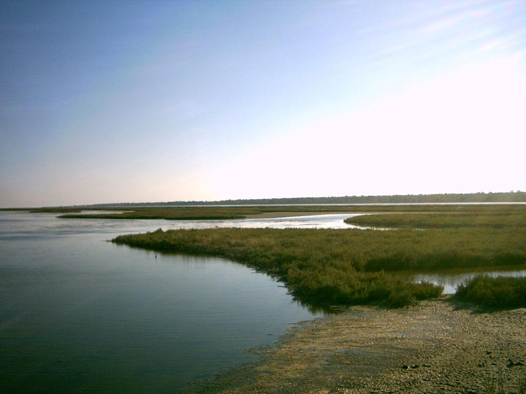 Karavasta lagoon