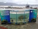 Sea Turtle Rehabilitation Center