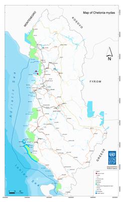 Map - Chelonia mydas