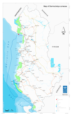 Map - Dermochelys coriacea